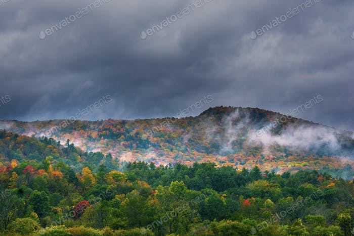 Vermont fall foliage.