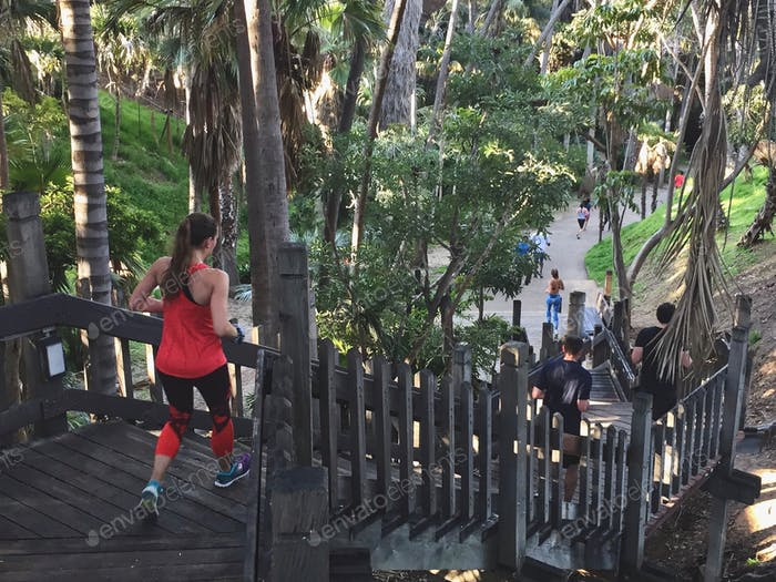 A beautiful day for a run as a woman jogs in the forest in Balboa Park.