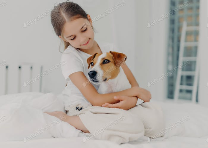 Relaxed beautiful small girl plays with pedigree dog, embraces favourite animal, sits on bed