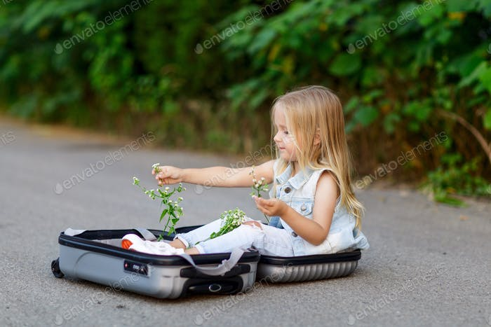 Beautiful little girl in torn jeans sitting on the road in suitcase and playing with chamomile