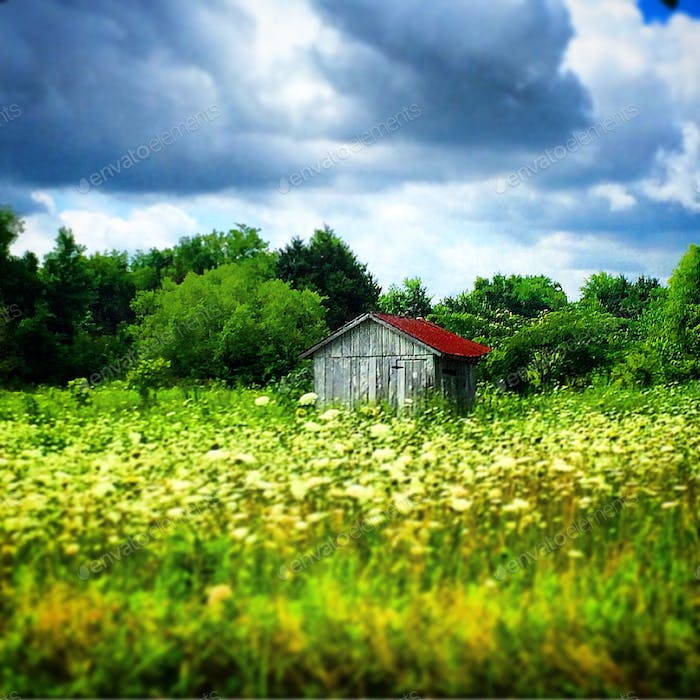 Barn in field