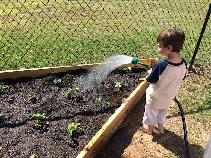 Bewässerung des Gartens
