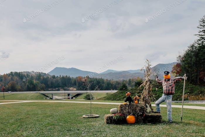 Scarecrow on a farm in Halloween