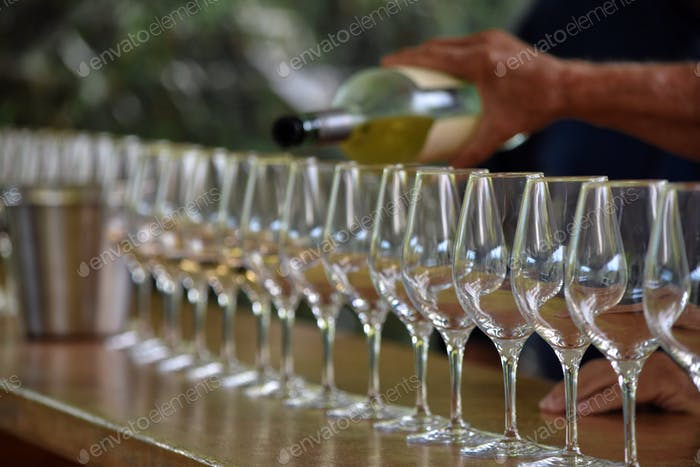 Man pouring white wine into a row of glasses during a tourist wine tour of Sonoma in Northern