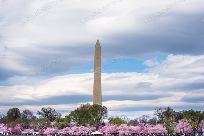 Washington Denkmal