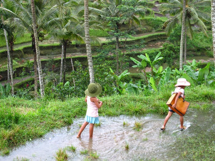 2 Mädchen spielen im Wasser auf einem Reisfeld
