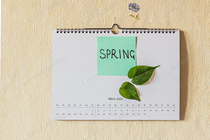 "Calendar on the wall for the month of March with the text ""Spring"" in English and flowers."