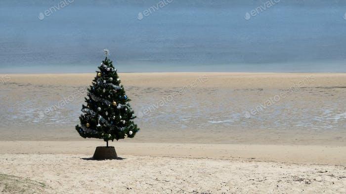Minimal Christmas tree outdoors on the beach no people