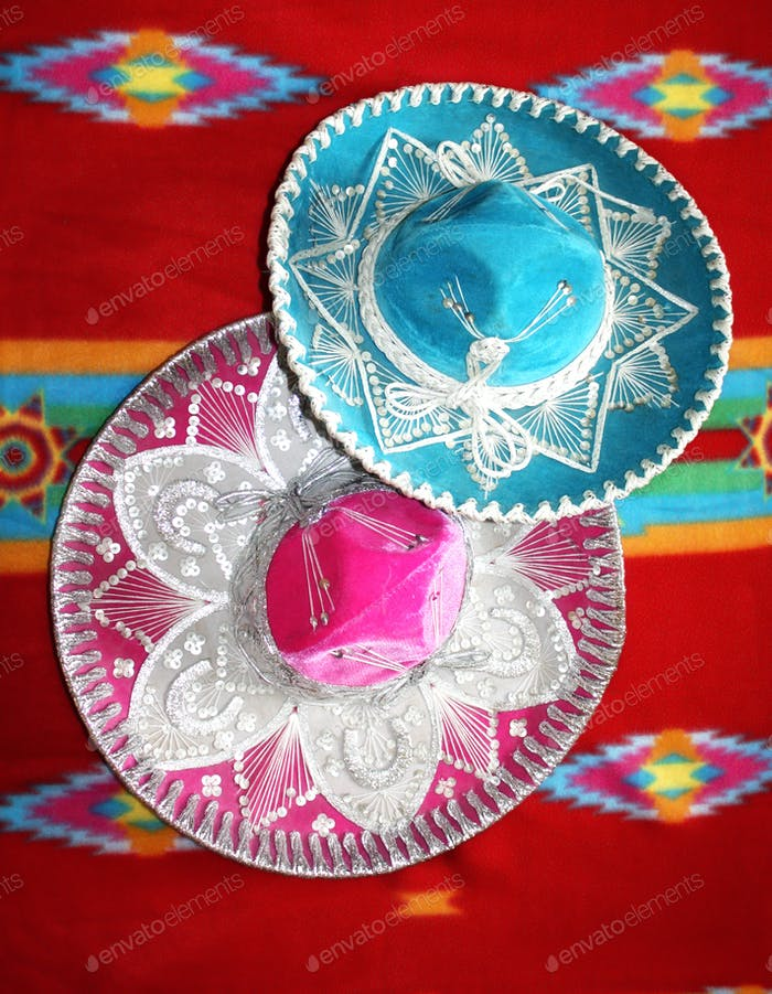 Pink Mexican Hat and Blue Mexican Hat