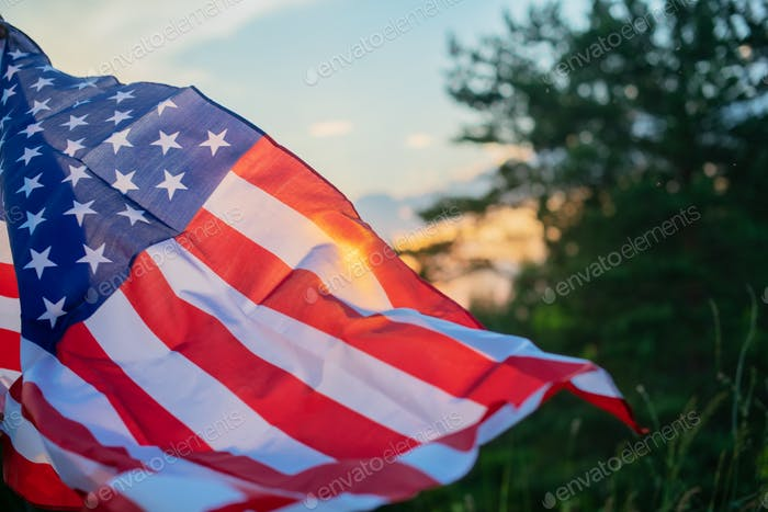 Veterans Day Flag Of The United States Of America. American flag flying.