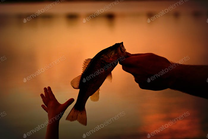 Take a child Fishing