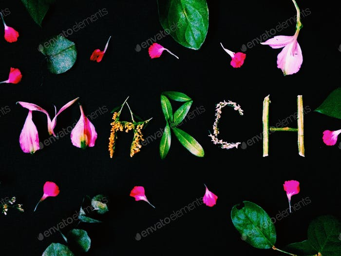 Month of March