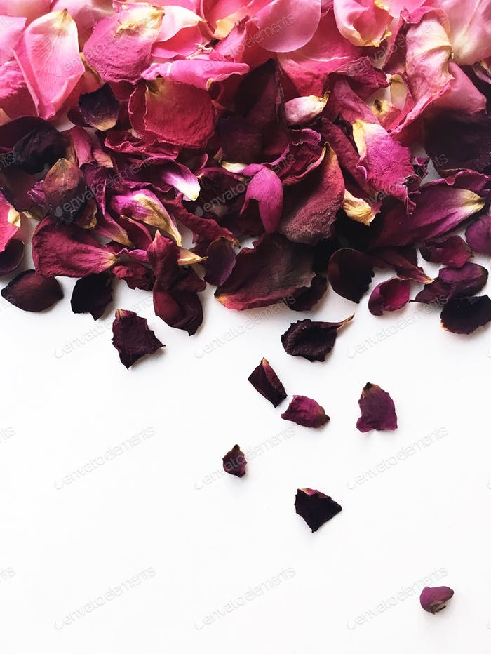 Arranged ombré pink and purple dried rose flower petals on a white background.