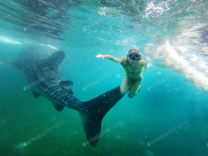 Woman Snorkeling with whales sharks