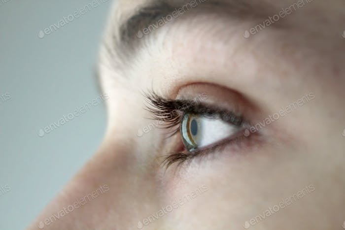 Close up of the eye, eyelashes, iris, pupil