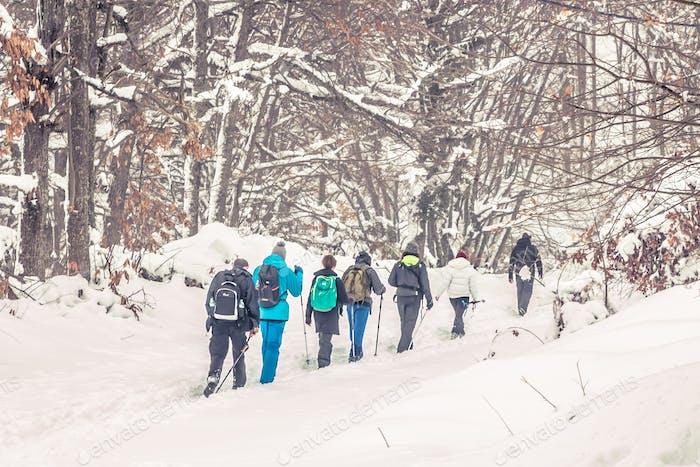 Grupo de Personas Senderismo En Montaña Nieve En Invierno