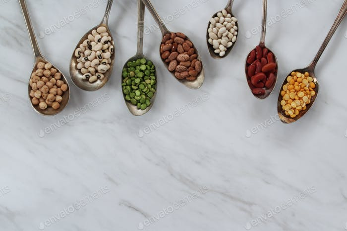 Pflanzenbasiertes Protein