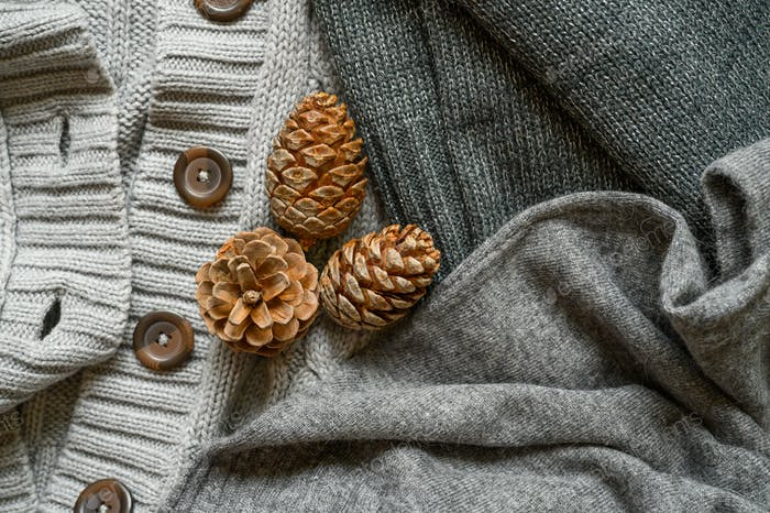 pine cones on the background of knitted sweaters in gray shades, top view. 2020, autumn, background,