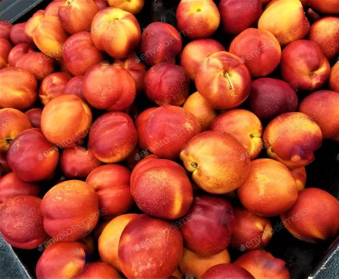 Fresh Fruit! Nectarines!