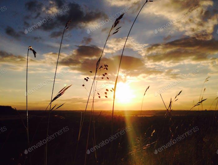Sunset heaven