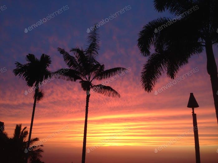 Big island of Hawaii sunset