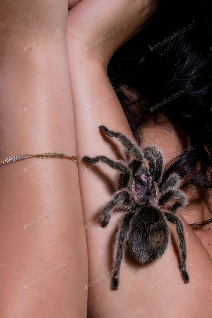 Dangerous tarantula walking around beautiful woman's body.