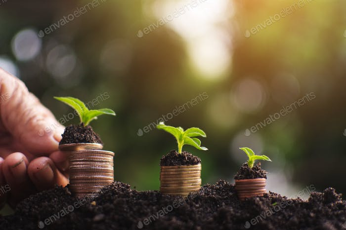 Human hand holding coin planting money to success