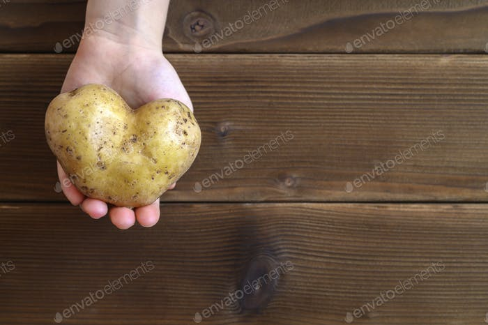 ugly food. kid's hand holding ugly vegetable a heart shaped potato on a wooden plank table