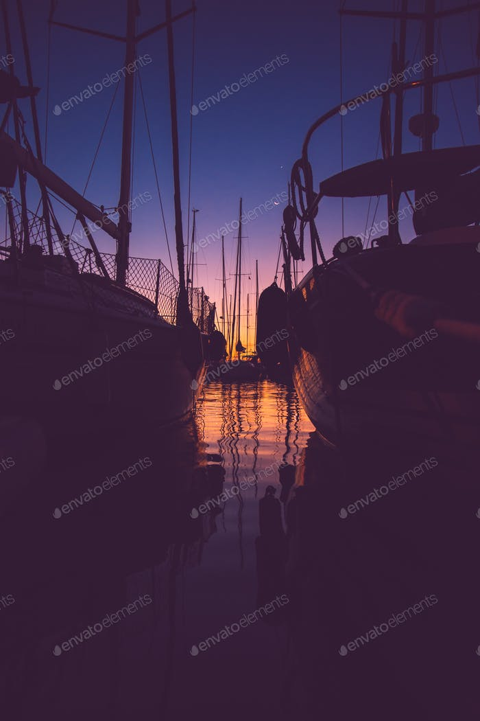*Nominated* Looking at sunrise in the harbor