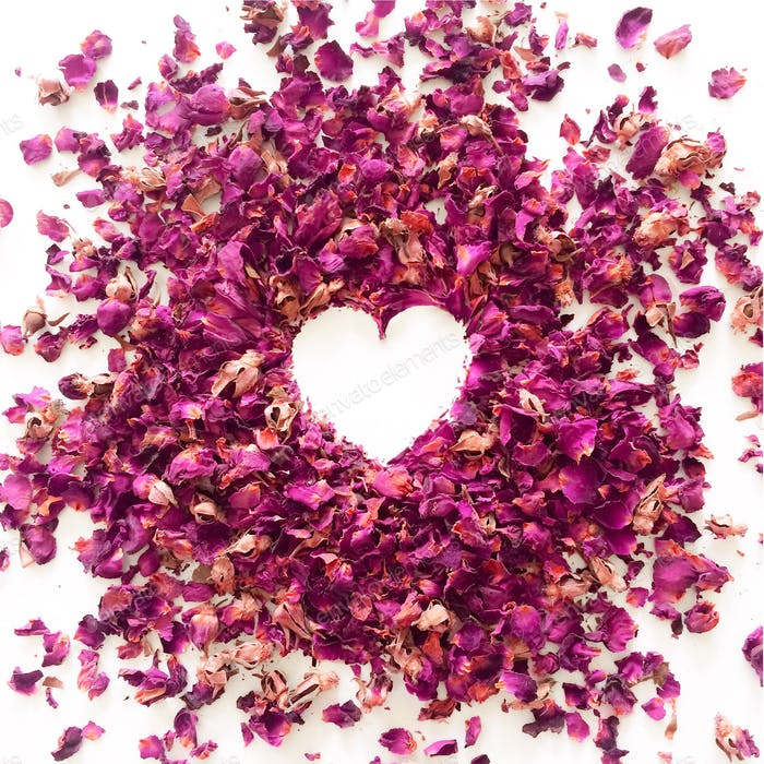 Heart shape formed in the negative space of pink rose flower petals on a white background.