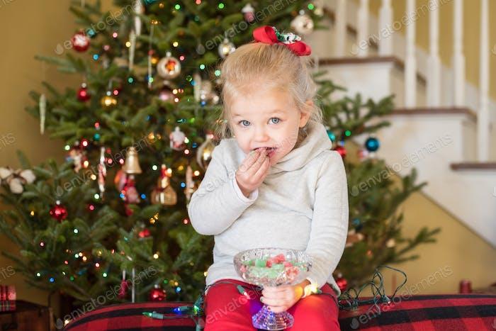 Schleichen Sie ein wenig Weihnachtsbonbons!  ✨ Nominiert ✨