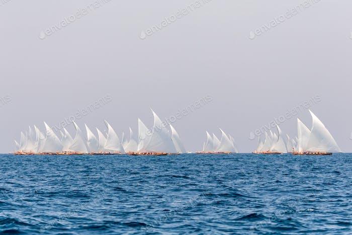 Sailing boats race in Abu Dhabi, UAE