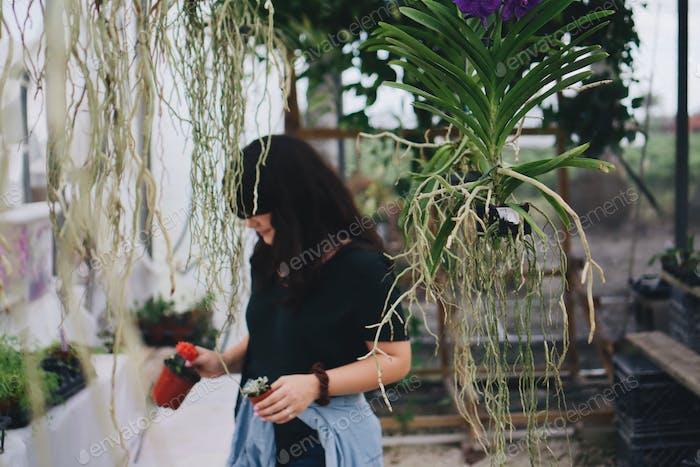 Woman plant shopping