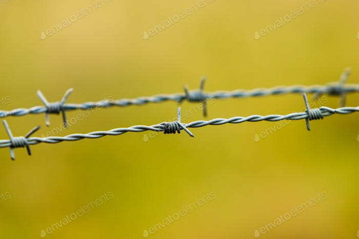 Barbed wire, do not enter