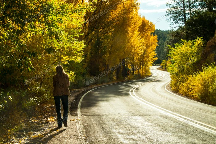 Walking down a curvy road in the fall colors