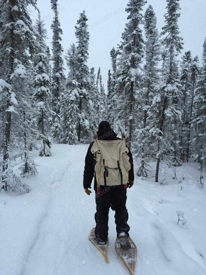 Travel snowshoeing