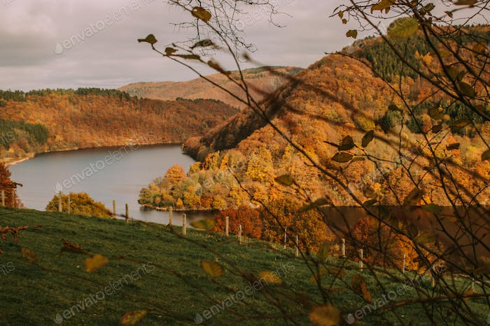 Autumn landscape and golden hour near a lake