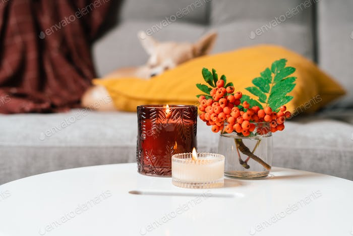Still life, candle, rowan berry and pumpkin in the living room on a table, home decor in cozy house