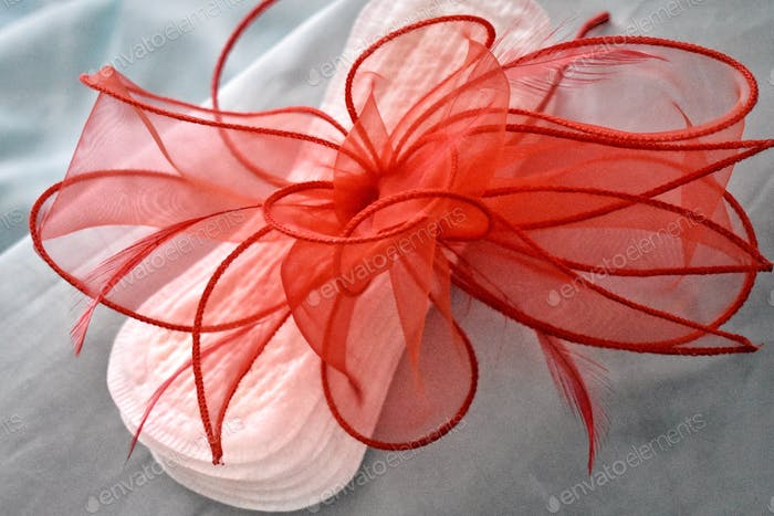 WOMENS HEALTH : MENSTRUATION YOU DON'T HAVE TO WEAR A HAT EACH MONTH! RED FASCINATOR ON SANITARY PAD
