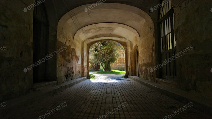 A dark hallway entrance leading to the back yard of a house with green grass and a tree