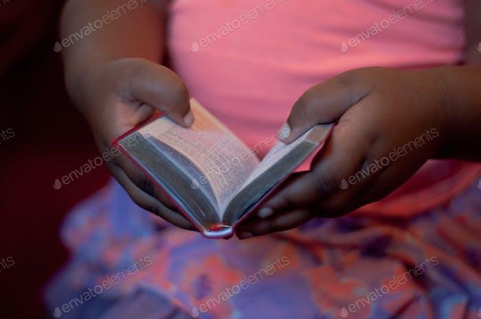 Little Hands Little Bible