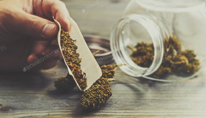Close up of hand rolling a marijuana joint