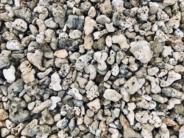 Background full frame shot of dry coral and volcanic rocks
