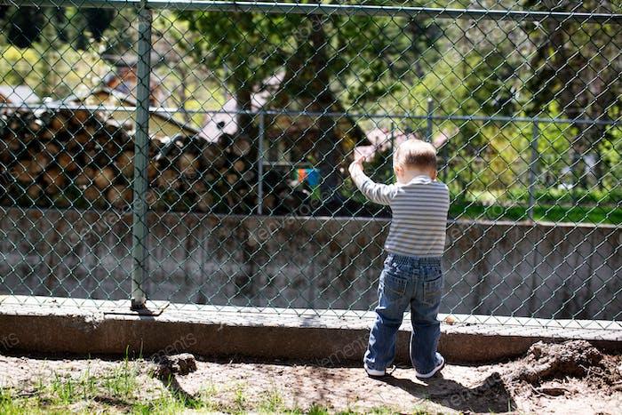kleines Kleinkind schaut durch einen Maschendrahtzaun
