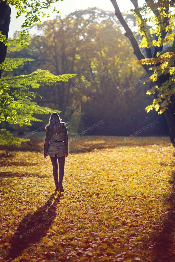 Autumn stroll ... 🍁