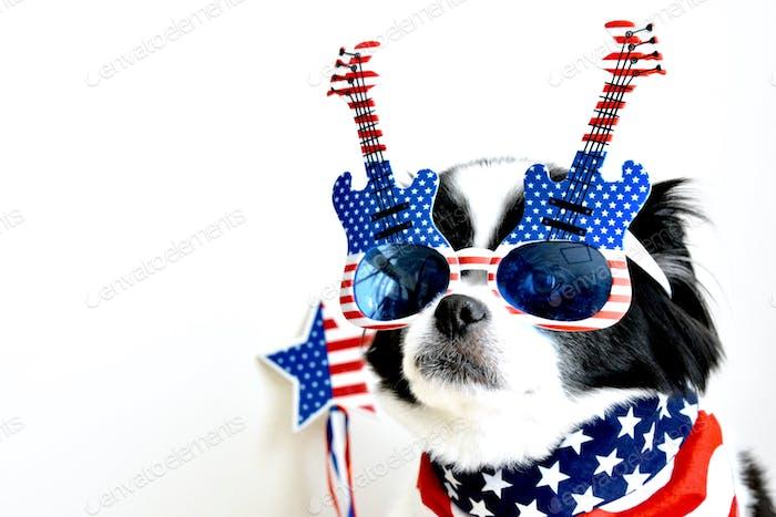 Patriotic doggie 🐶   💫Nominated 💫