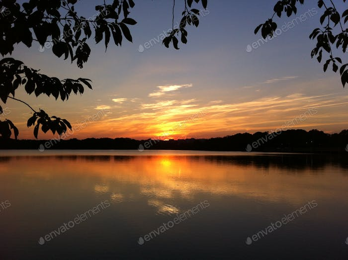 Tidal Basin Sunset