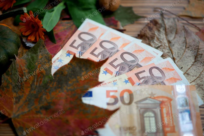 50 and 20 Euro banknotes money (EUR), currency of European Union.