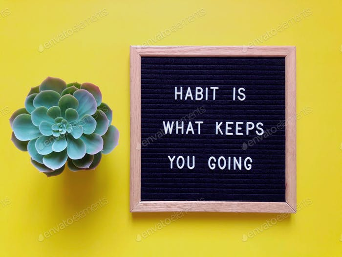 Habit is what keeps you going. Quote. Quotes.