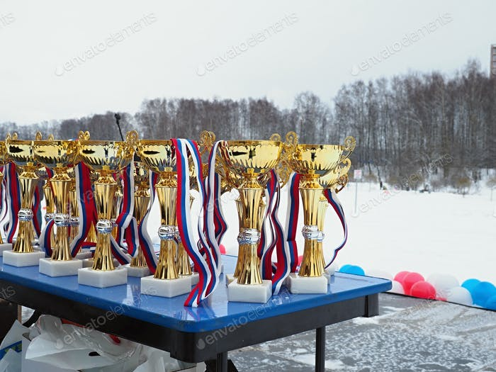 """""""Golden"""" prizes for winter sporting events"""